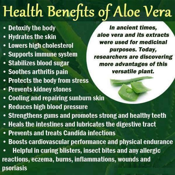 Aloe Vera and its benefits.. How often do you use Aloe Vera? Here are several…