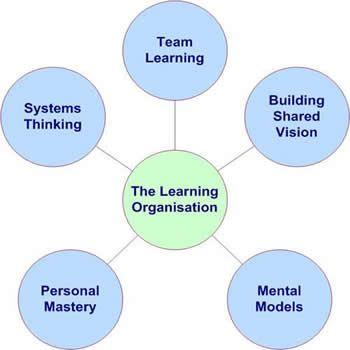 organisational behaviour essay example