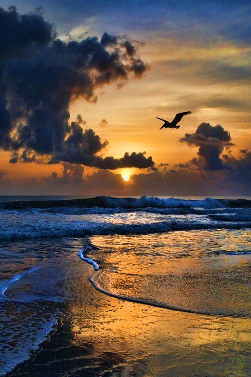 I miss sundown walks on the beach: