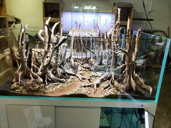 Front view of completed Hardscape situe #hardscape #aquascaping # ...