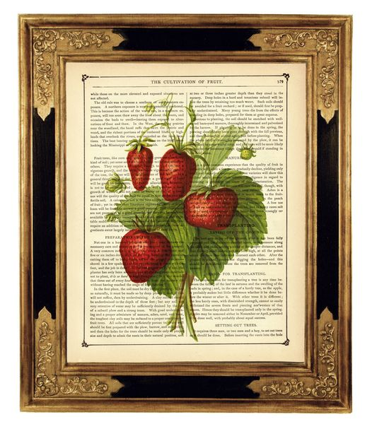 strawberries on news print