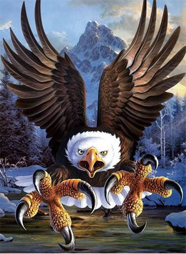 Eagle Lenticular 3d Picture Animal Poster Painting Home Decor Wall Art Decor Eagle Wallpaper Eagle Images Eagle Pictures Cool eagle wallpaper 3d
