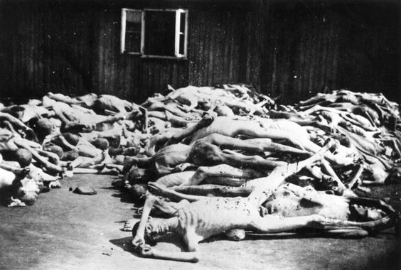 Pile Of Bodies : Mauthausen death camp austria a pile of bodies may