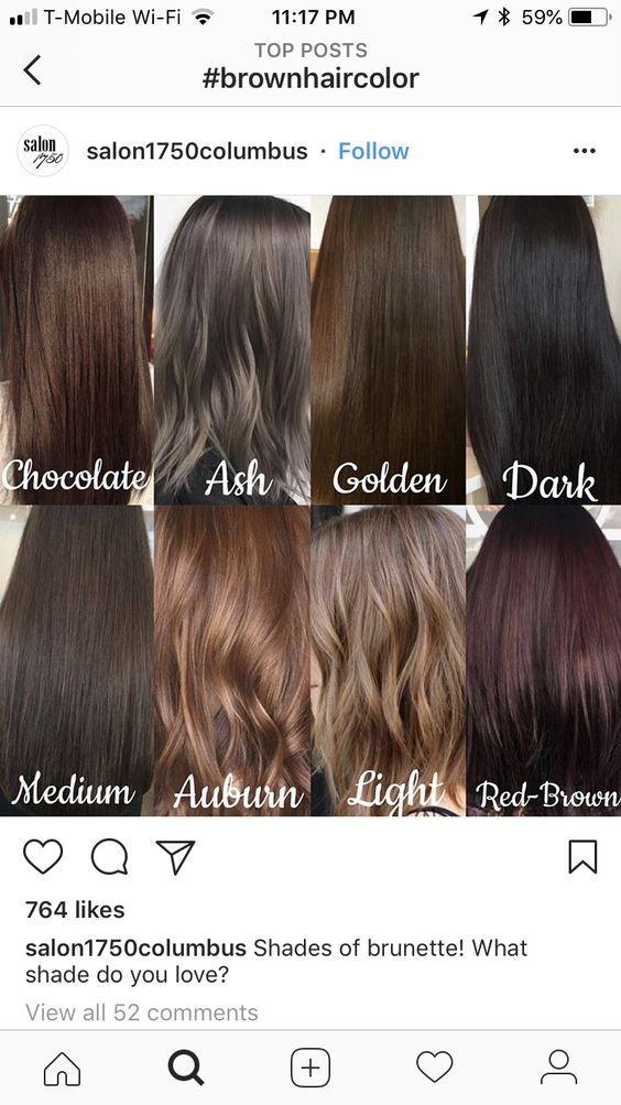 90 Hair Color Tone Chart Balayage Color Specialist Page 84 Telorecipe212 Com Medium Brown Hair Color Ash Hair Color Hair Shades