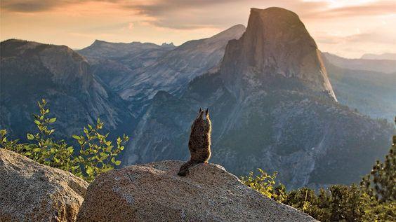 The Best Adventure Photography: Exposure 2014