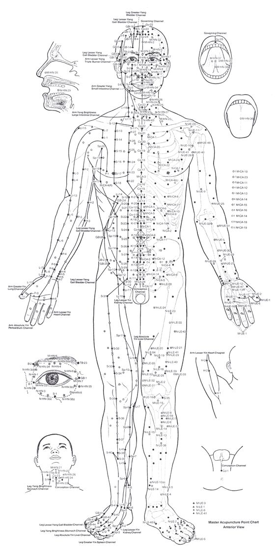 Use of trigger point acupuncture chart and flow ccuart Gallery