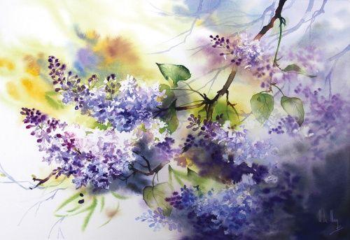 Galerie D Aquarelles Maryse De May Aquarelle Aquarelle Fleurs
