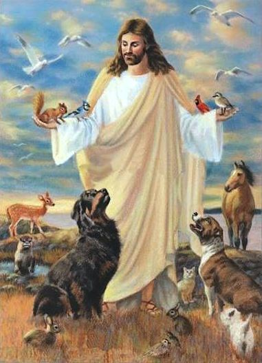 """There is great debate amongst Bible scholars whether or not animals will go to heaven. Questions arise whether or not animals and pets have a """"spiritâ€, and whether or not animals have a """"soulâ€. T…"""