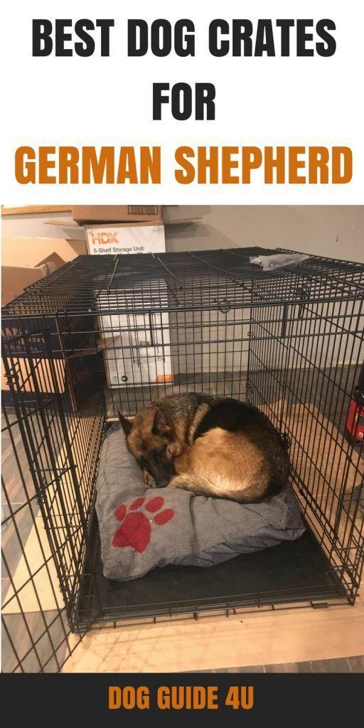 Best Dog Crates For German Shepherd Germanshepherd German