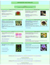 Lista de alimentos ricos en Hidratos de Carbono Complejos