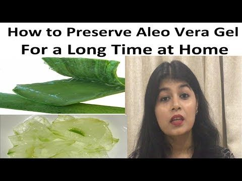 How To Store Aloe Vera Gel For Long Time Hindi How To Preserve