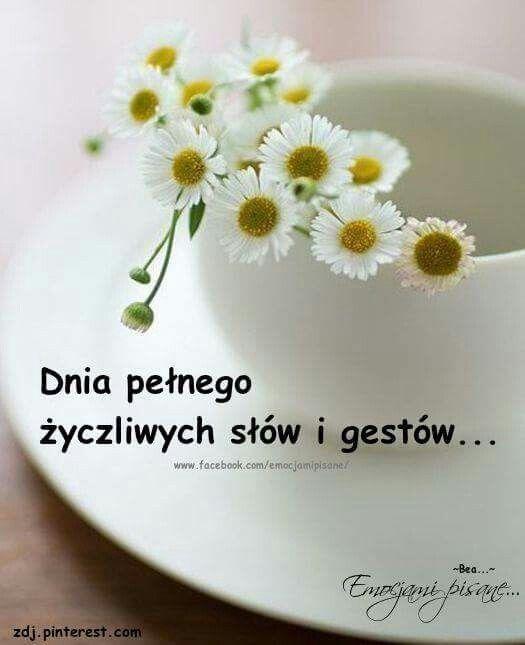 Dobrego dnia życzę | Cytaty na dzień dobry, Dzień dobry, Cytaty