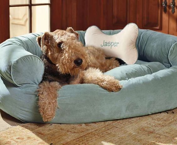 This pet couch offers unsurpassed support that ordinary dog beds can't match.: