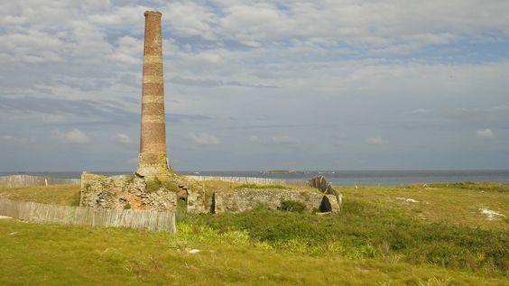 Les Glenan.  L'île du Loc'h, avec une ancienne ferme et un étang d'eau saumâtre, est la propriété de la famille Bolloré. C'est la plus grande en superficie. Le baron Fortuné Halna du Fretay tenta l'exploitation d'une pisciculture dans cet étang.  Il modernisa également les techniques de brûlage du goémon en faisant construire un véritable four d'usine en 1874. La cheminée de cette ancienne installation de fabrication de soude destinée à l'industrie pharmaceutique sert maintenant d'amer.