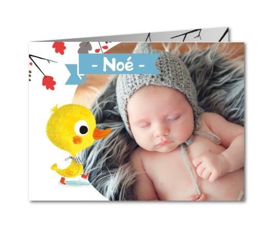 faire part naissance canard babynote
