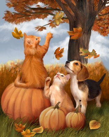 Fall Fun by Thomas Wood ~ kittens & puppy ~ autumn