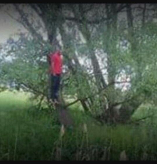 'He wasn't lynched:' Wife of man found hanging in Beachwood tree outraged over pictures of his body circulating online