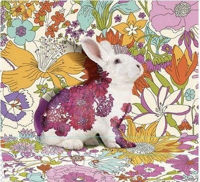 ♞ Artful Animals ♞ bird, dog, cat, fish, bunny and animal paintings - Pop art bunny, artist unknown