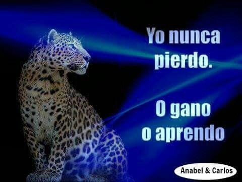 Así de claro... Todo el la vida son Ganancias o Aprendizajes, nunca son Pérdidas!!! #anabelycarlos #fuerzaycoraje #sinlimites