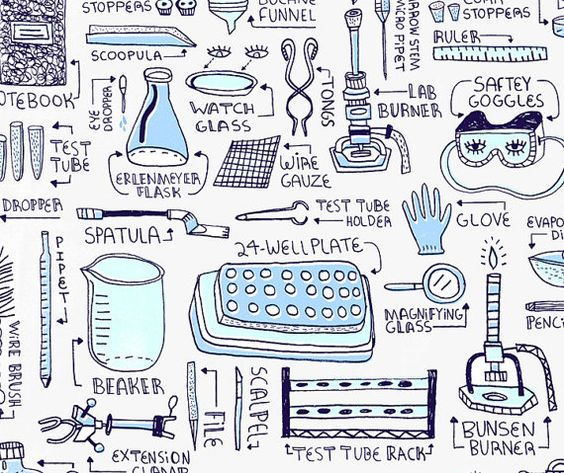 Worksheets Biology Laboratory Equipment lab equipment art print by rachelignotofsky on etsy biology etsy