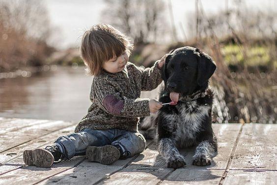 madre hace fotos de su hijo con los perros