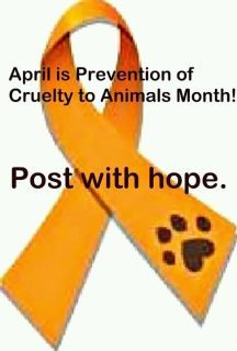 Help protect animals.  They need our protection.