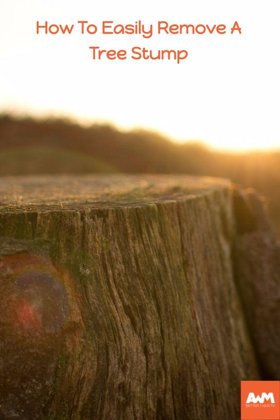 how to kill tree stumps with epsom salts