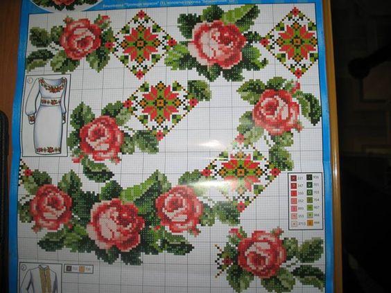 троянди 25 5