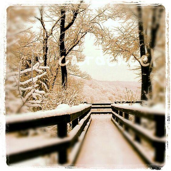 Winter scene here in Austria taken with #instagram  #camera @austria