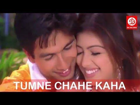 3 Tumne Chahe Kaha Na Dil Maange More Shahid Kapoor Udit Narayan Shreya Ghoshal Youtube Youtube Music Videos