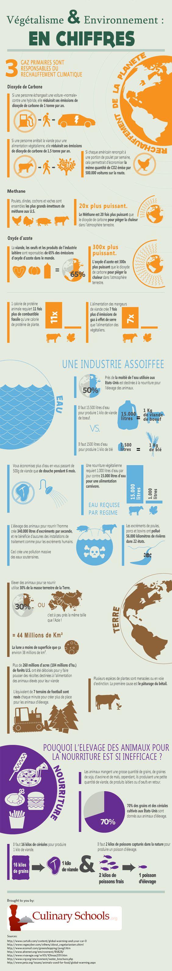 Vegetalisme et environnement en chiffres