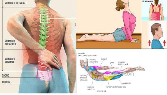 Ora il mal di schiena non sarà più un problema. Rimuovi il dolore con queste posizioni. Troverai subito sollievo e benessere...Per il corpo e la mente.