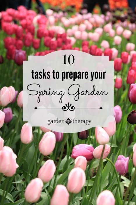 These are the 10 tasks to tackle in the spring to get your garden ready for the year!
