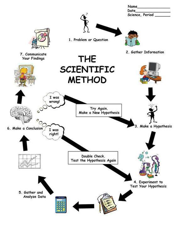 Photo Credit HomeschoolingOnADime Home School Pinterest - scientific method worksheet