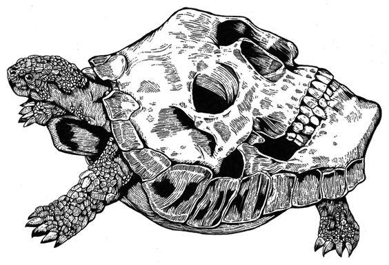 Tortoise + Skull + Black & white + Ink drawing = Funeral French