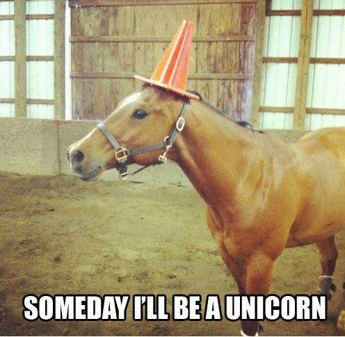 Someday I'll be a unicorn.