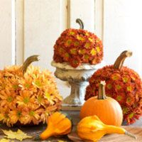 Flower Power Pumpkins