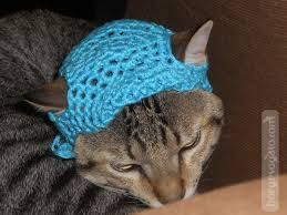 roupinha croche gato - Pesquisa Google