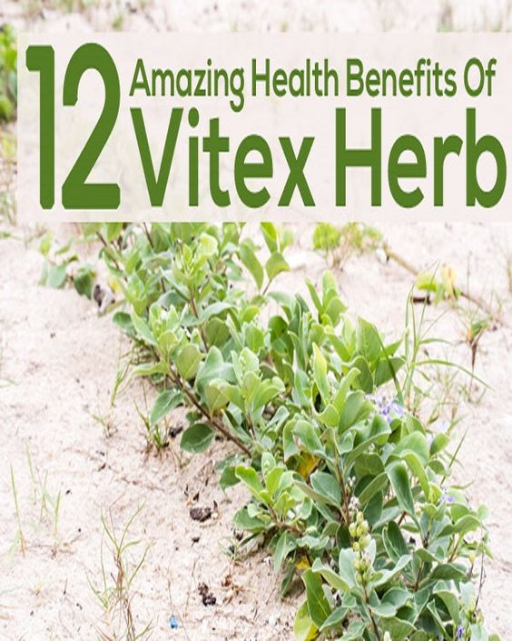 Benefits of vitex