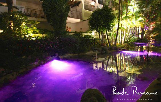 Cisnes en Puente Romano.  Summer Nights at Puente Romano Beach Resort Marbella.   #PuenteRomano #Marbella #Cisnes
