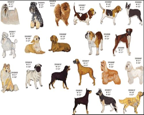 Types Dogs Breeds Names