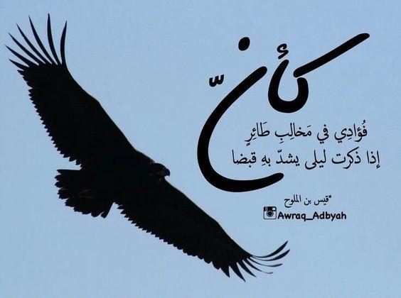 Pin By Made On من القلب إلى القلب Heart To Heart Love Quotes Arabic Words Arabic Quotes