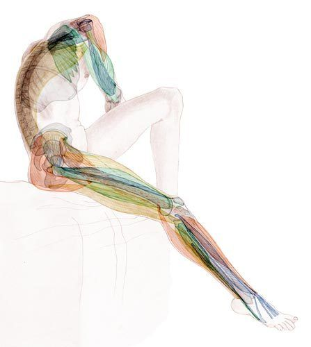 Scientific medical illustrations by Dana Hamers, via Behance