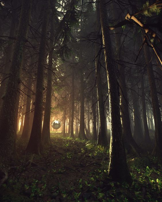 CRYENGINE V - Forest Lighting Studies - by Damian Stempniewski