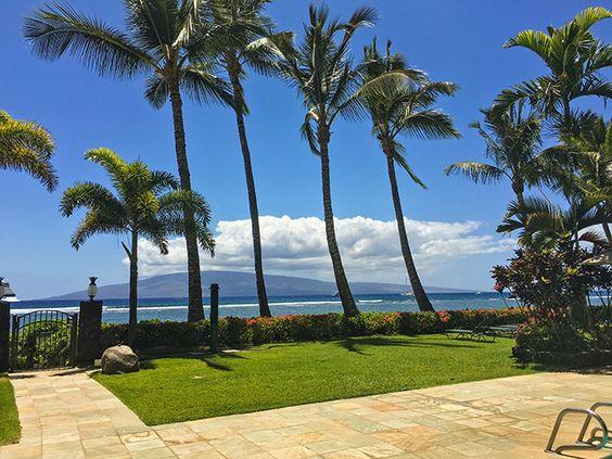 Maui hotel lahaina shores