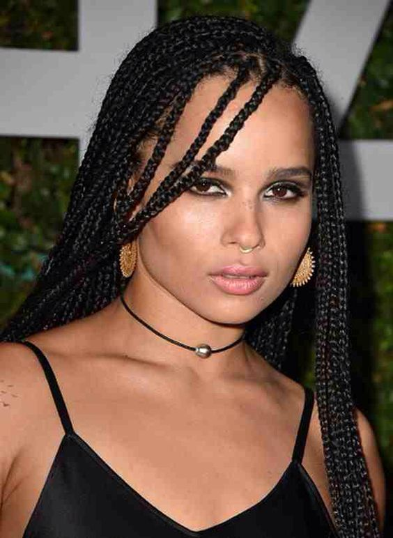 Lenny Kravitz Hair Twist