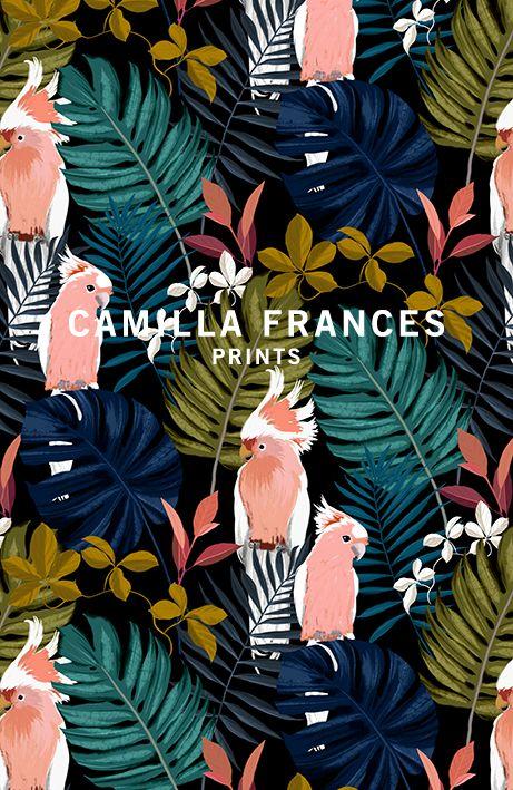 Collection | Camilla Frances Prints