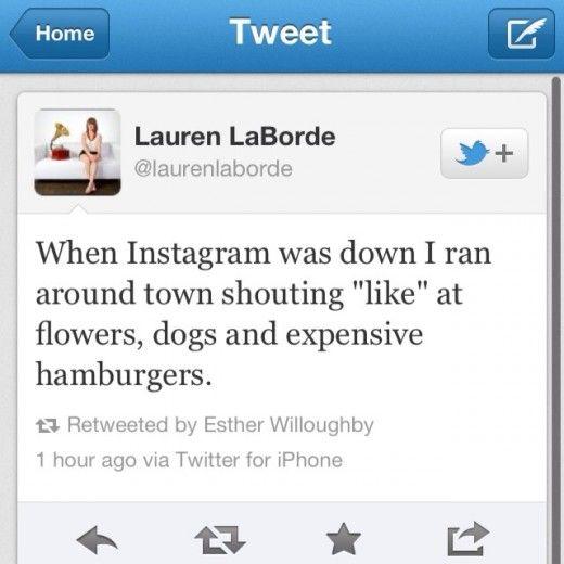 Best Instagram Bio Quotes: 17 Best Images About Bio Quotes