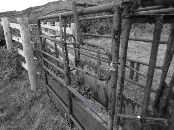 Old Cattle gate