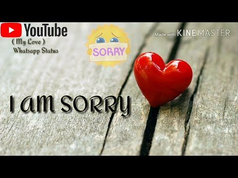 Im Sorry Whatsapp Status Lyrics Video For You My